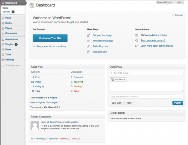 WordPress Dashboard - Basic