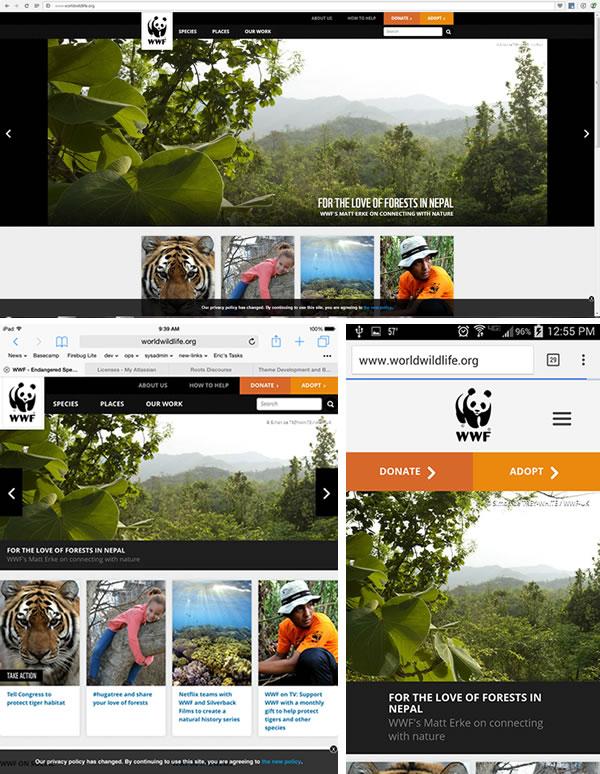 Responsive WWF Example